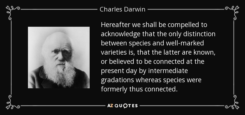 Hereafter we shall be compelled to acknowledge that the only distinction between species and well-marked varieties is, that the latter are known, or believed to be connected at the present day by intermediate gradations whereas species were formerly thus connected. - Charles Darwin