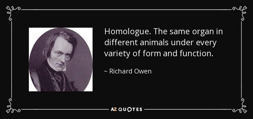 Homologue. The same organ in different animals under every variety of form and function. - Richard Owen