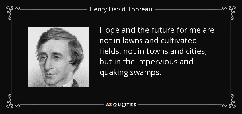 Hope and the future for me are not in lawns and cultivated fields, not in towns and cities, but in the impervious and quaking swamps. - Henry David Thoreau