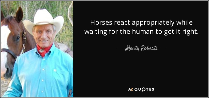 Horses react appropriately while waiting for the human to get it right. - Monty Roberts