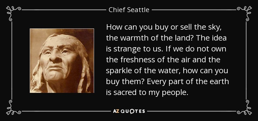 How can you buy or sell the sky, the warmth of the land? The idea is strange to us. If we do not own the freshness of the air and the sparkle of the water, how can you buy them? Every part of the earth is sacred to my people. - Chief Seattle
