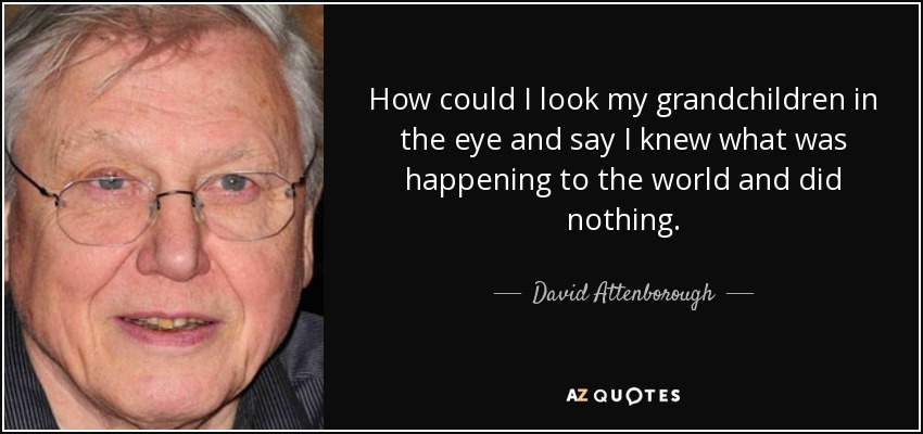 How could I look my grandchildren in the eye and say I knew what was happening to the world and did nothing. - David Attenborough