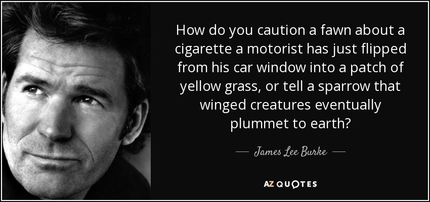 How do you caution a fawn about a cigarette a motorist has just flipped from his car window into a patch of yellow grass, or tell a sparrow that winged creatures eventually plummet to earth? - James Lee Burke