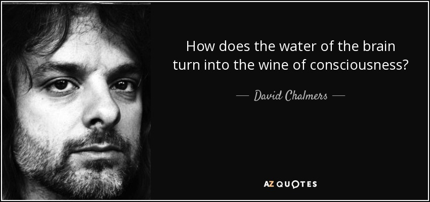 How does the water of the brain turn into the wine of consciousness? - David Chalmers