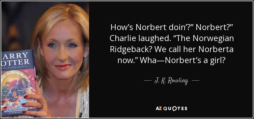 "How's Norbert doin'?"" Norbert?"" Charlie laughed. ""The Norwegian Ridgeback? We call her Norberta now."" Wha—Norbert's a girl? - J. K. Rowling"