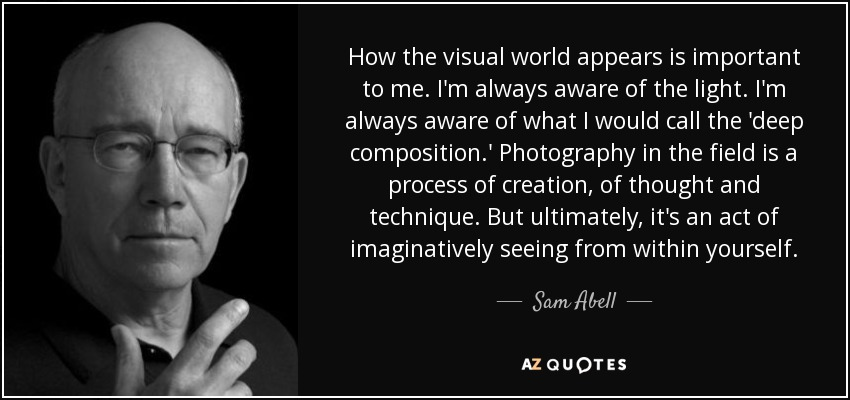 How the visual world appears is important to me. I'm always aware of the light. I'm always aware of what I would call the 'deep composition.' Photography in the field is a process of creation, of thought and technique. But ultimately, it's an act of imaginatively seeing from within yourself. - Sam Abell