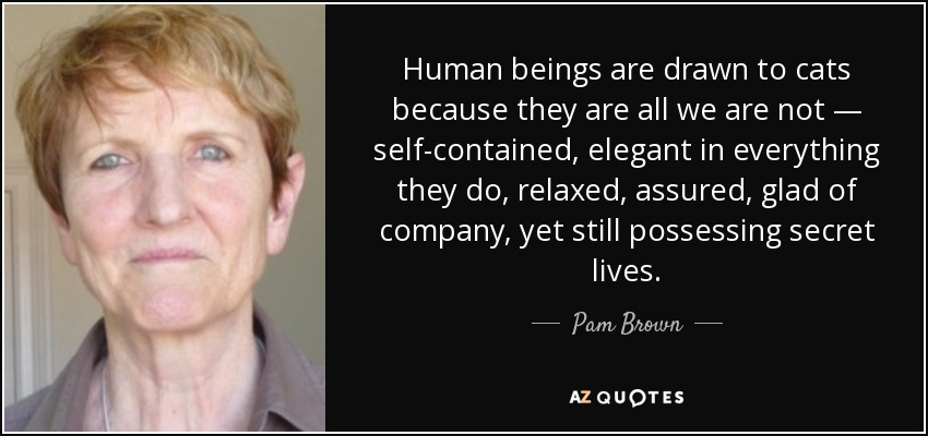 Human beings are drawn to cats because they are all we are not — self-contained, elegant in everything they do, relaxed, assured, glad of company, yet still possessing secret lives. - Pam Brown