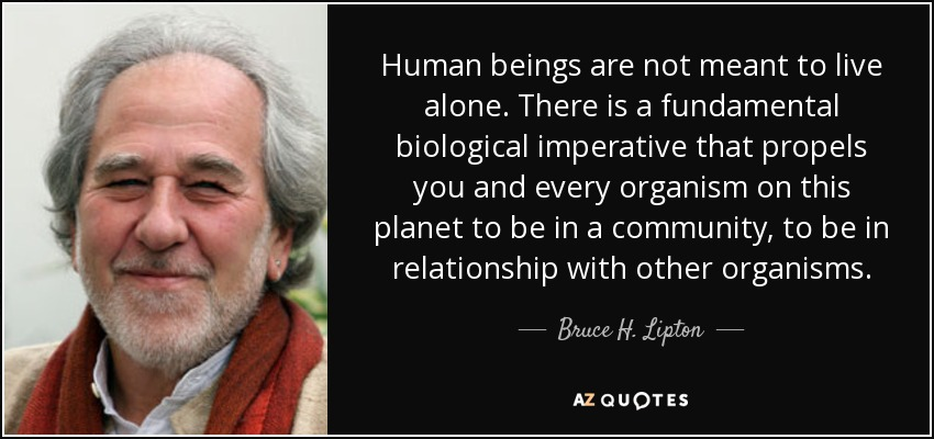 Bruce H Lipton Quote Human Beings Are Not Meant To Live Alone