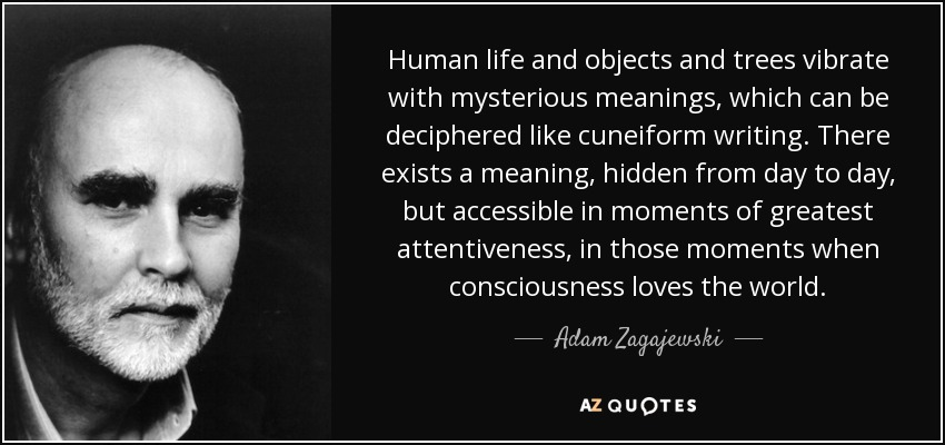 Human life and objects and trees vibrate with mysterious meanings, which can be deciphered like cuneiform writing. There exists a meaning, hidden from day to day, but accessible in moments of greatest attentiveness, in those moments when consciousness loves the world. - Adam Zagajewski