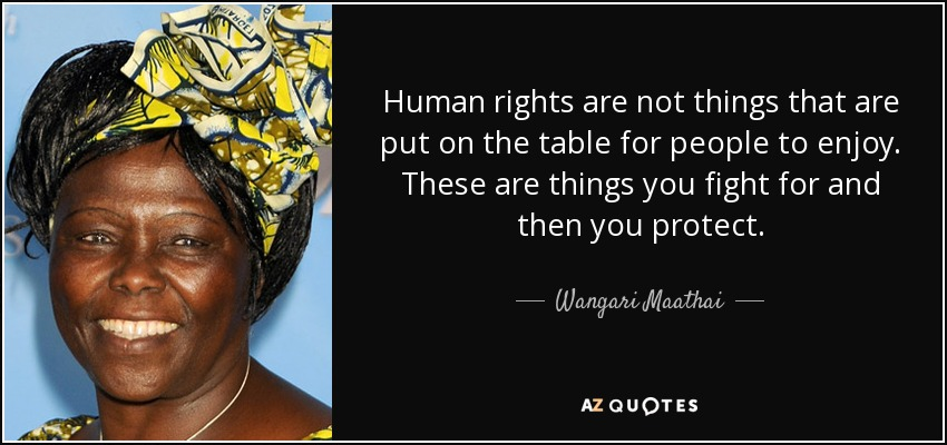Human rights are not things that are put on the table for people to enjoy. These are things you fight for and then you protect. - Wangari Maathai