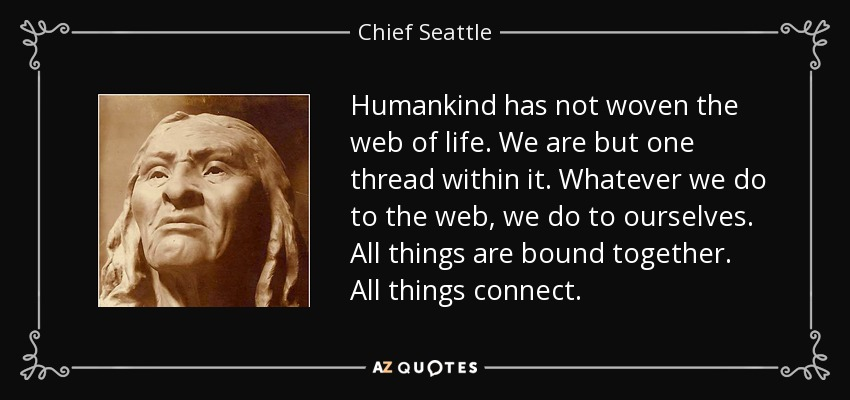 Humankind has not woven the web of life. We are but one thread within it. Whatever we do to the web, we do to ourselves. All things are bound together. All things connect. - Chief Seattle