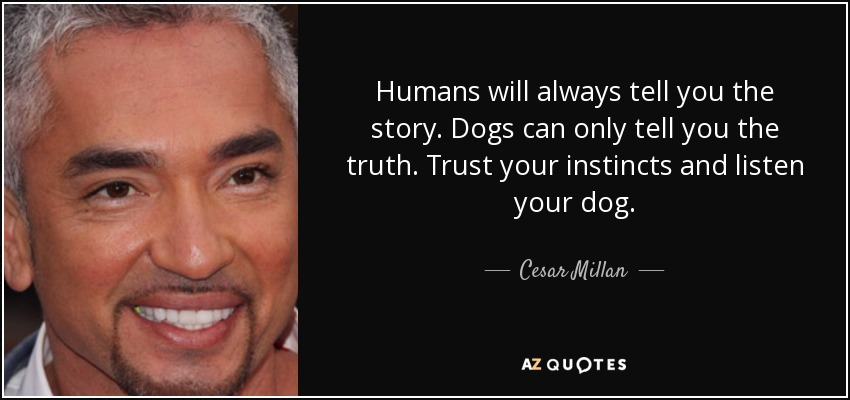 Cesar Millan quote: Humans will always tell you the story