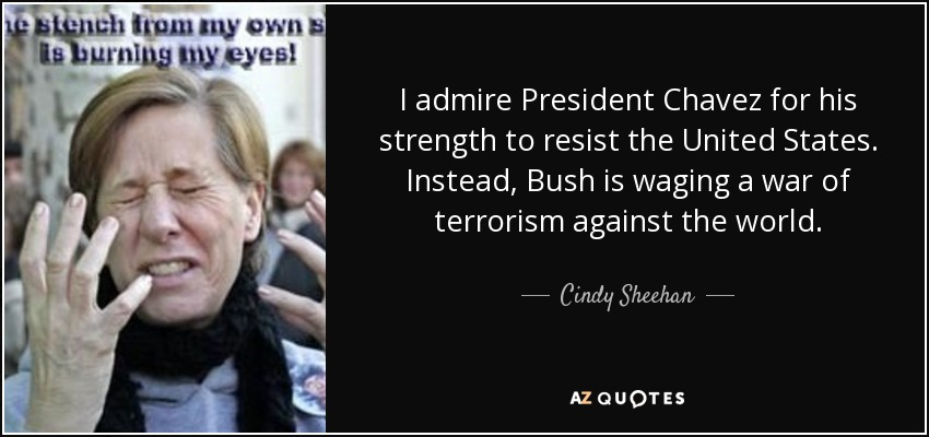 Image result for cindy sheehan chavez