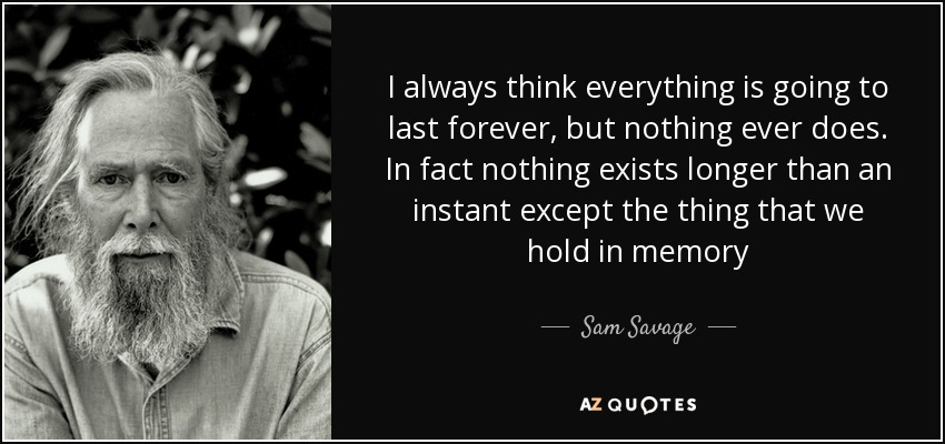 I always think everything is going to last forever, but nothing ever does. In fact nothing exists longer than an instant except the thing that we hold in memory - Sam Savage