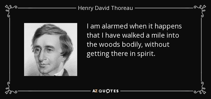 TOP 17 WALKS IN THE WOODS QUOTES | A-Z Quotes