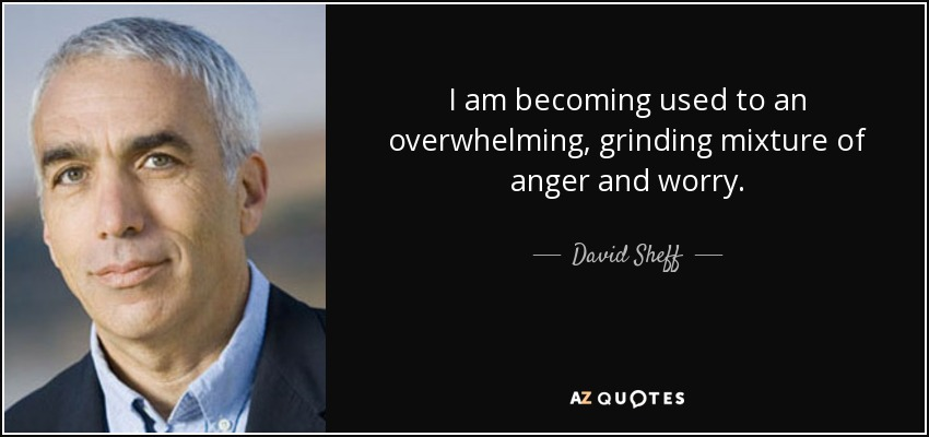 I am becoming used to an overwhelming, grinding mixture of anger and worry... - David Sheff