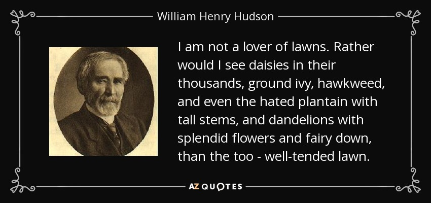 I am not a lover of lawns. Rather would I see daisies in their thousands, ground ivy, hawkweed, and even the hated plantain with tall stems, and dandelions with splendid flowers and fairy down, than the too - well-tended lawn. - William Henry Hudson