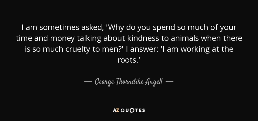 Top 25 Kindness To Animals Quotes Of 65 A Z Quotes