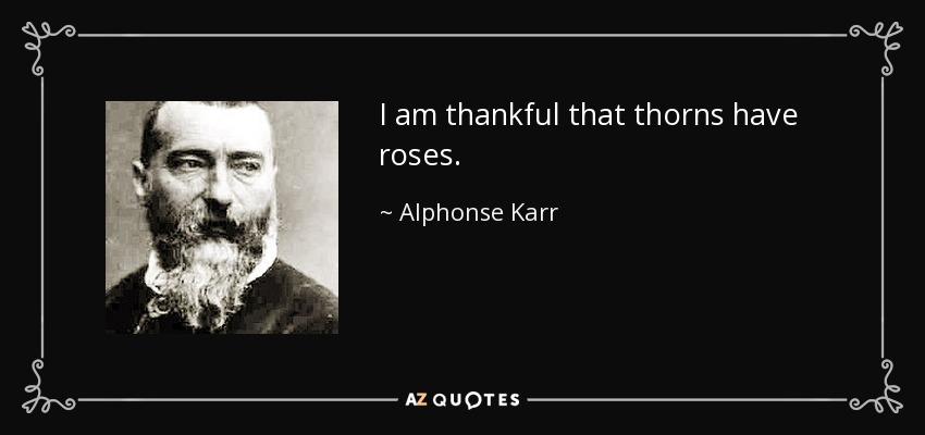 I am thankful that thorns have roses. - Alphonse Karr