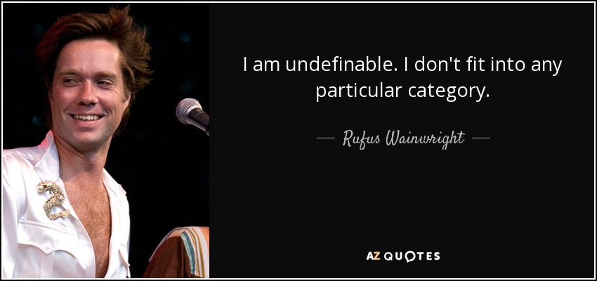 I am undefinable. I don't fit into any particular category. - Rufus Wainwright