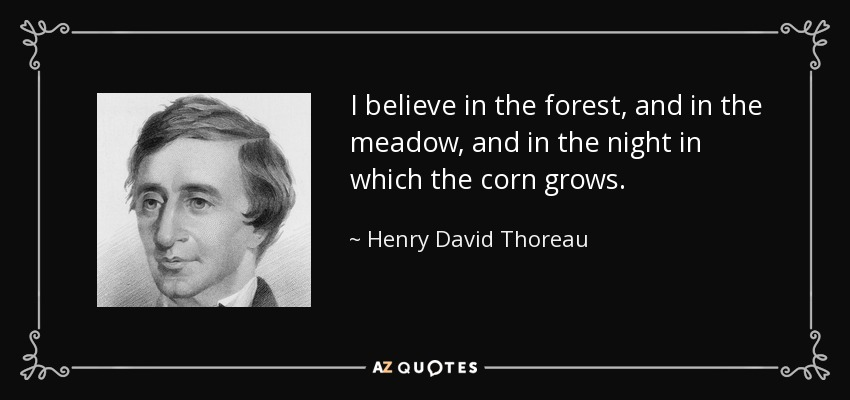 I believe in the forest, and in the meadow, and in the night in which the corn grows. - Henry David Thoreau
