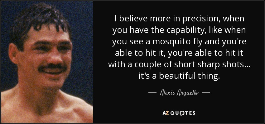 I believe more in precision, when you have the capability, like when you see a mosquito fly and you're able to hit it, you're able to hit it with a couple of short sharp shots... it's a beautiful thing. - Alexis Arguello