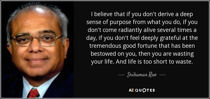 I believe that if you don't derive a deep sense of purpose from what you do, if you don't come radiantly alive several times a day, if you don't feel deeply grateful at the tremendous good fortune that has been bestowed on you, then you are wasting your life. And life is too short to waste. - Srikumar Rao