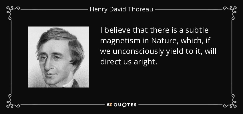 I believe that there is a subtle magnetism in Nature, which, if we unconsciously yield to it, will direct us aright. - Henry David Thoreau