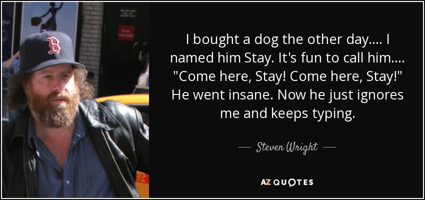 Steven Wright quote: I bought a dog the other day