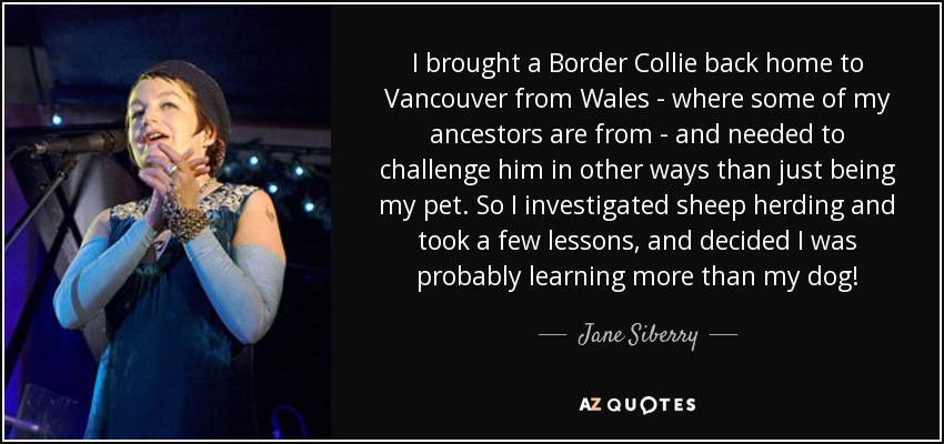 I brought a Border Collie back home to Vancouver from Wales - where some of my ancestors are from - and needed to challenge him in other ways than just being my pet. So I investigated sheep herding and took a few lessons, and decided I was probably learning more than my dog! - Jane Siberry