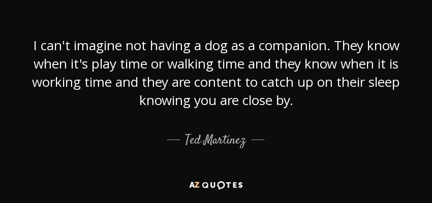I can't imagine not having a dog as a companion. They know when it's play time or walking time and they know when it is working time and they are content to catch up on their sleep knowing you are close by. - Ted Martinez