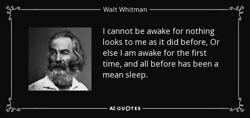 I cannot be awake for nothing looks to me as it did before, Or else I am awake for the first time, and all before has been a mean sleep. - Walt Whitman