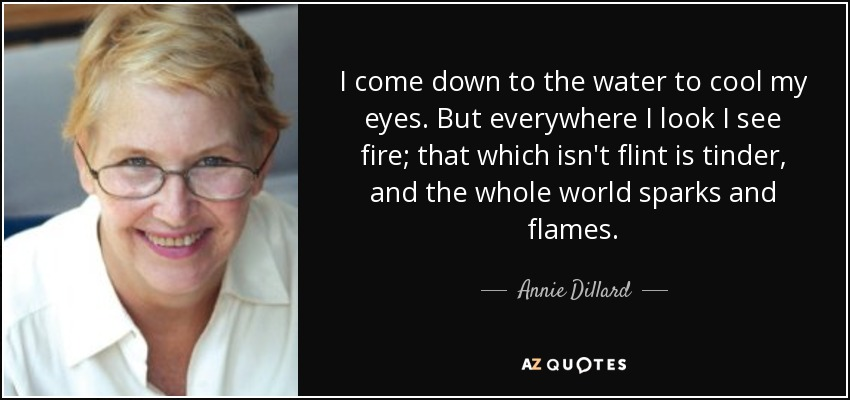 I come down to the water to cool my eyes. But everywhere I look I see fire; that which isn't flint is tinder, and the whole world sparks and flames. - Annie Dillard