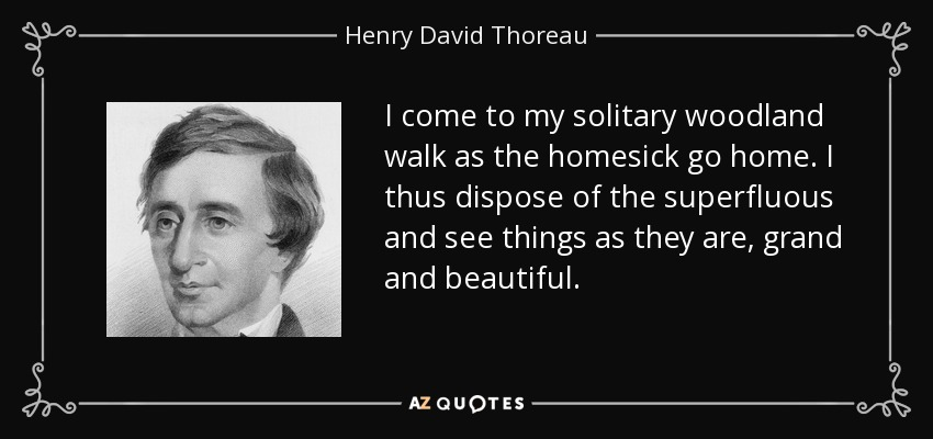 I come to my solitary woodland walk as the homesick go home. I thus dispose of the superfluous and see things as they are, grand and beautiful. - Henry David Thoreau