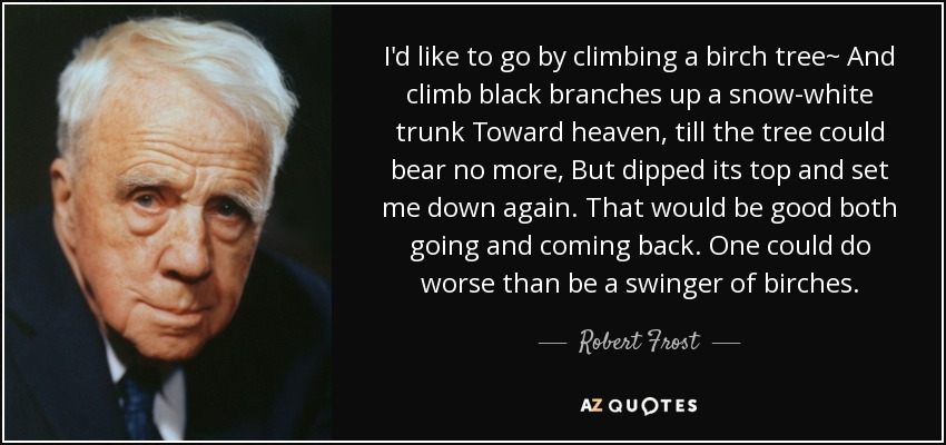 I'd like to go by climbing a birch tree~ And climb black branches up a snow-white trunk Toward heaven, till the tree could bear no more, But dipped its top and set me down again. That would be good both going and coming back. One could do worse than be a swinger of birches. - Robert Frost