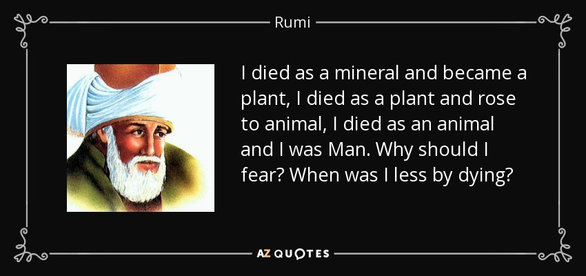 I died as a mineral and became a plant, I died as a plant and rose to animal, I died as an animal and I was Man. Why should I fear? When was I less by dying? - Rumi