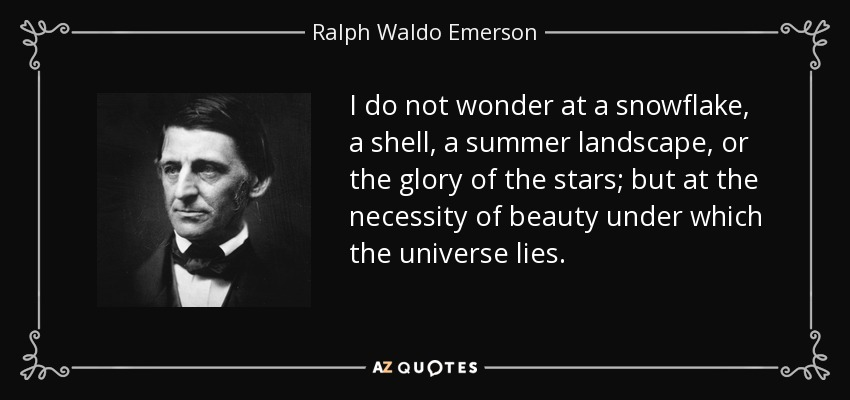I do not wonder at a snowflake, a shell, a summer landscape, or the glory of the stars; but at the necessity of beauty under which the universe lies. - Ralph Waldo Emerson