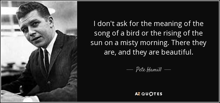 I don't ask for the meaning of the song of a bird or the rising of the sun on a misty morning. There they are, and they are beautiful. - Pete Hamill