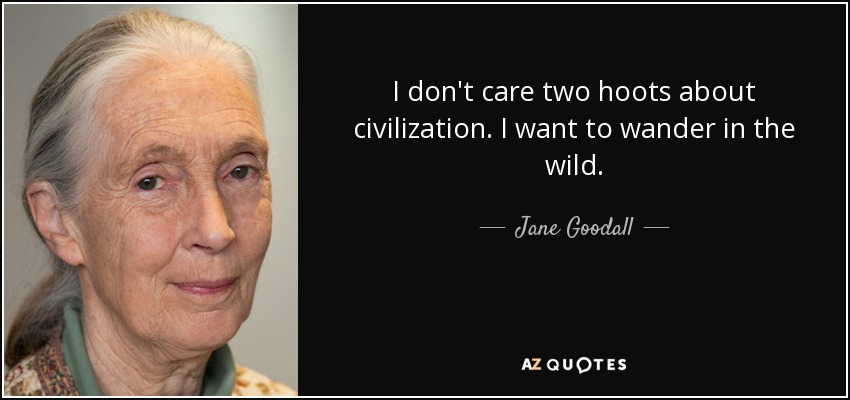 I don't care two hoots about civilization. I want to wander in the wild. - Jane Goodall