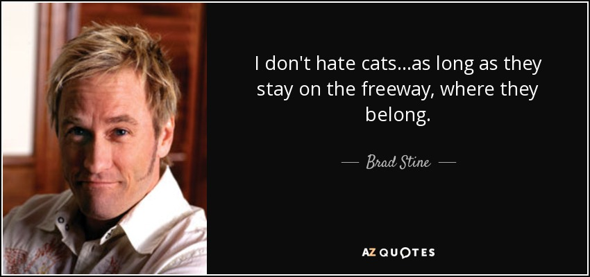 Brad Stine quote: I don\'t hate cats...as long as they stay ...