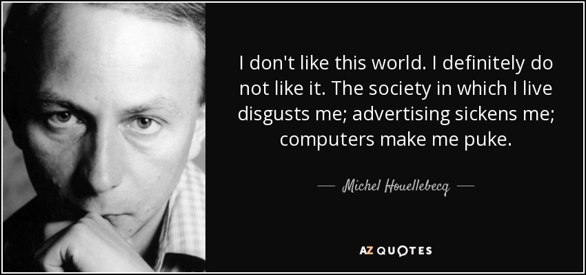 I don't like this world. I definitely do not like it. The society in which I live disgusts me; advertising sickens me; computers make me puke. - Michel Houellebecq
