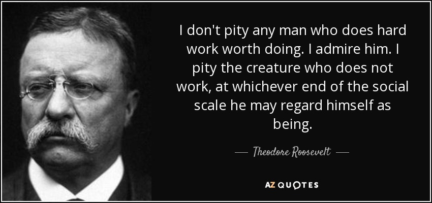 I don't pity any man who does hard work worth doing. I admire him. I pity the creature who does not work, at whichever end of the social scale he may regard himself as being. - Theodore Roosevelt