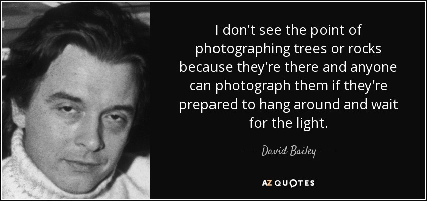 I don't see the point of photographing trees or rocks because they're there and anyone can photograph them if they're prepared to hang around and wait for the light. - David Bailey