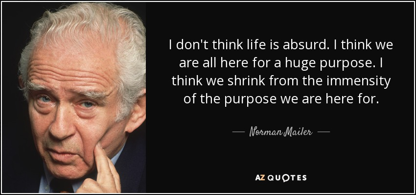 I don't think life is absurd. I think we are all here for a huge purpose. I think we shrink from the immensity of the purpose we are here for. - Norman Mailer