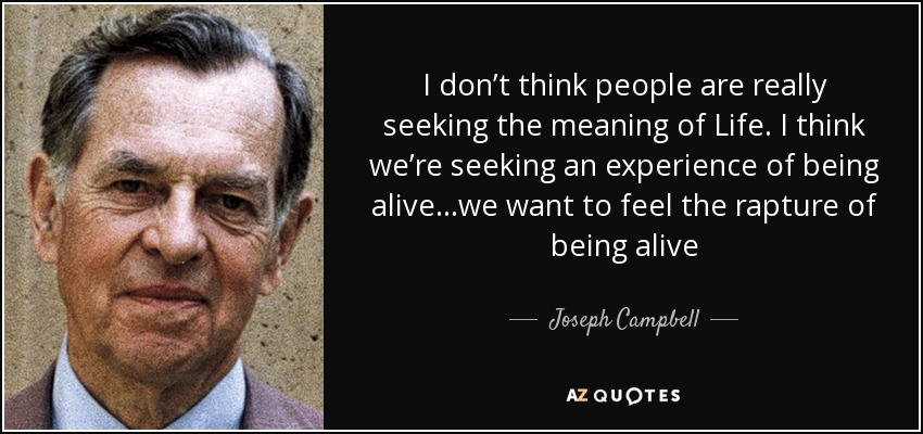 I don't think people are really seeking the meaning of Life. I think we're seeking an experience of being alive…we want to feel the rapture of being alive - Joseph Campbell