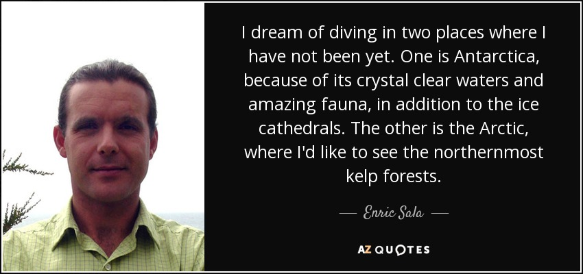 I dream of diving in two places where I have not been yet. One is Antarctica, because of its crystal clear waters and amazing fauna, in addition to the ice cathedrals. The other is the Arctic, where I'd like to see the northernmost kelp forests. - Enric Sala