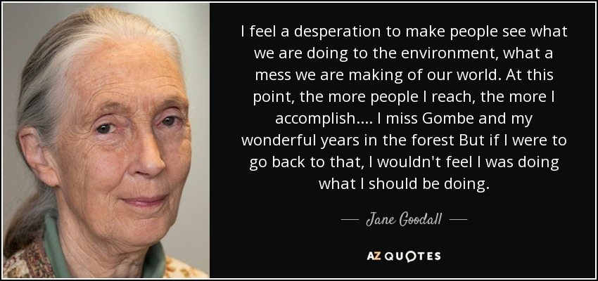 I feel a desperation to make people see what we are doing to the environment, what a mess we are making of our world. At this point, the more people I reach, the more I accomplish. ... I miss Gombe and my wonderful years in the forest But if I were to go back to that, I wouldn't feel I was doing what I should be doing. - Jane Goodall