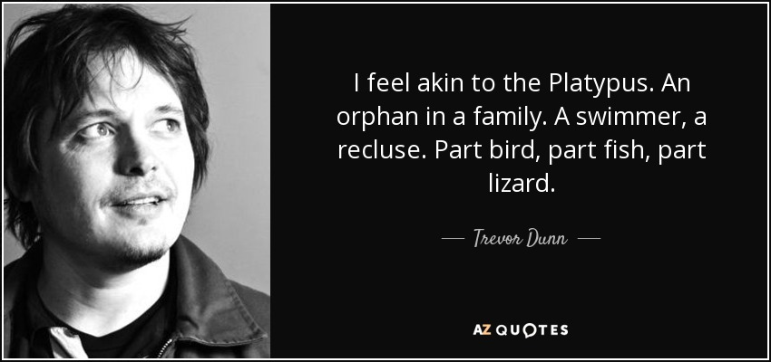 I feel akin to the Platypus. An orphan in a family. A swimmer, a recluse. Part bird, part fish, part lizard. - Trevor Dunn