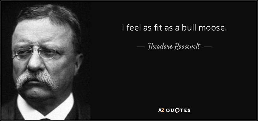 I feel as fit as a bull moose. - Theodore Roosevelt