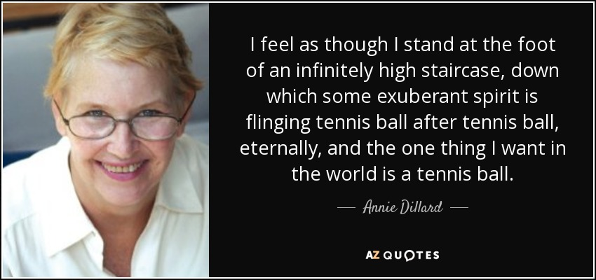 I feel as though I stand at the foot of an infinitely high staircase, down which some exuberant spirit is flinging tennis ball after tennis ball, eternally, and the one thing I want in the world is a tennis ball. - Annie Dillard